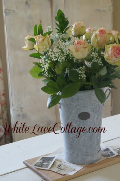 Esperance Roses and a sneak peek
