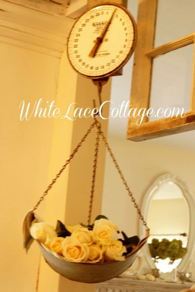 An Old Dairy scale a Ladder and White Roses