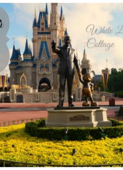 Disney Dreams Do Come True