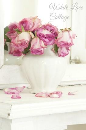 pink rose shabby romantic