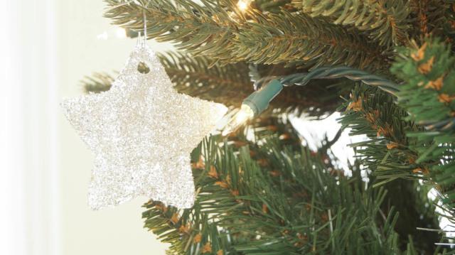 German Glass Glitter Ornaments (2 of 10)