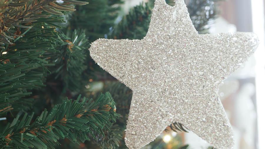 German Glass Glitter Ornaments (9 of 10)