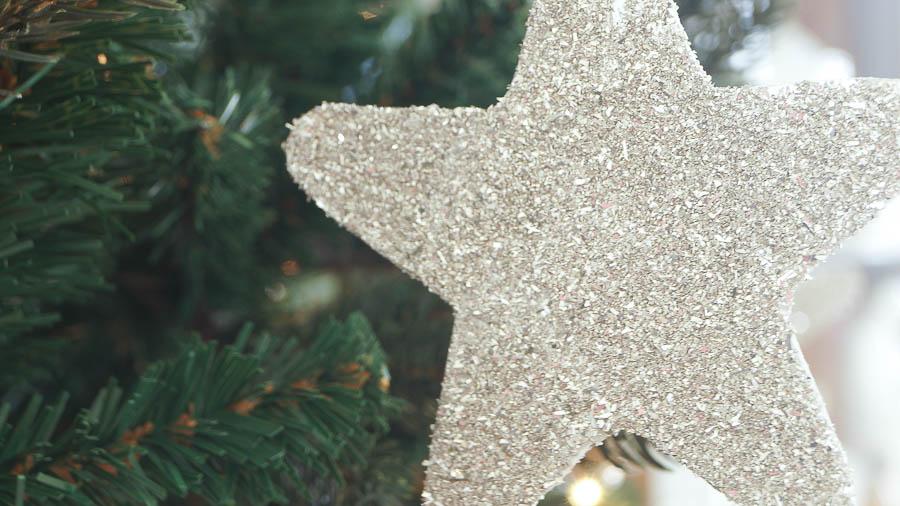 German glass glitter star ornaments-1