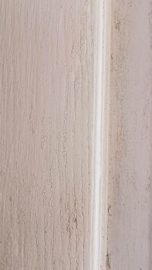 Chippy Vintage Door (17 of 87)
