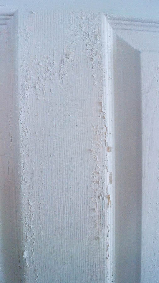 Chippy Vintage Door (2 of 87)