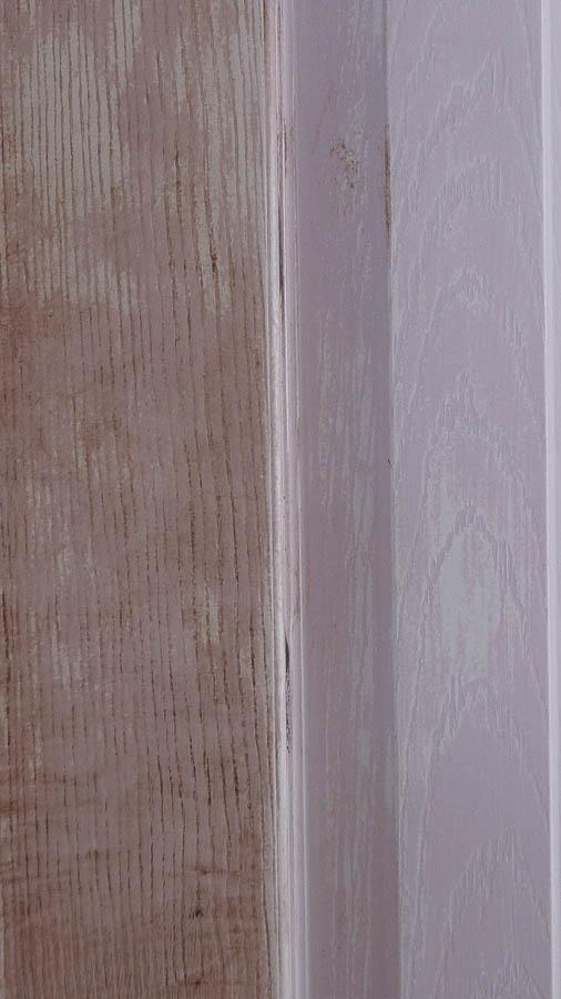 Chippy Vintage Door (5 of 6)